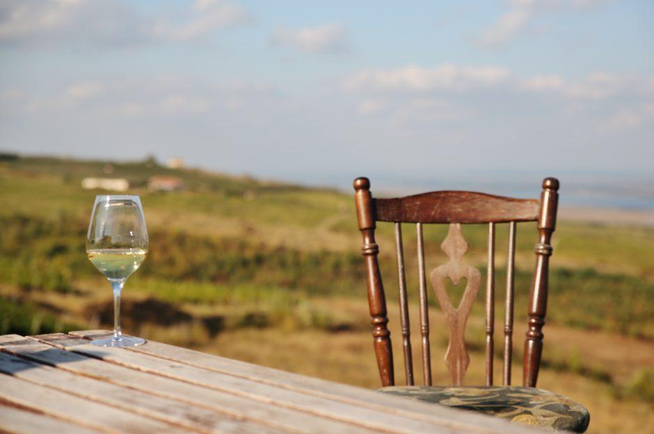 Pahare cu vin (2)